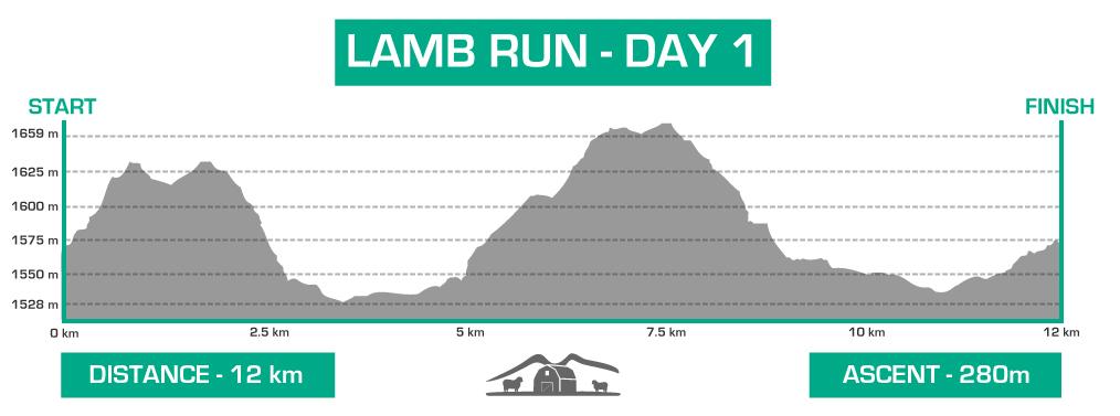 lamb-day-1