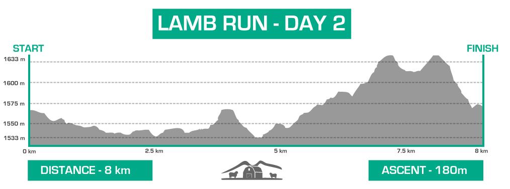 lamb-day-2